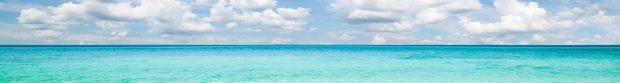 cropped-beach-01.jpg